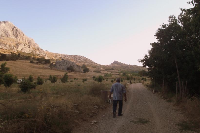 Paseo con los chuchos (2)
