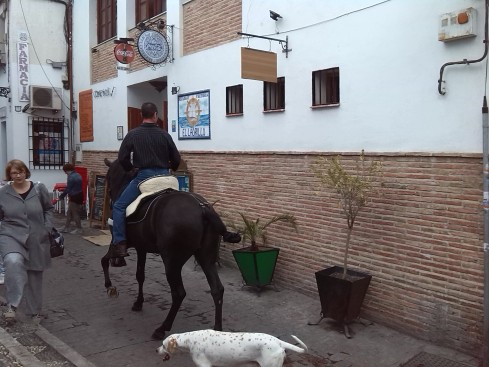 Granada 2013 (4)