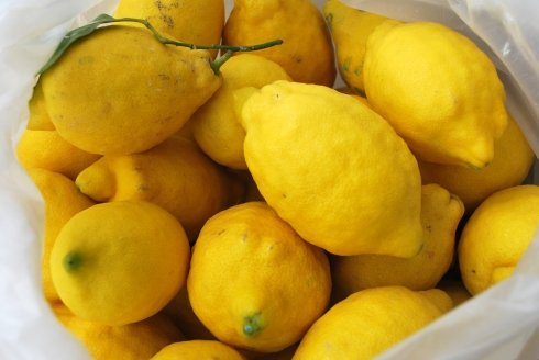 Berenjenas y Limones 007